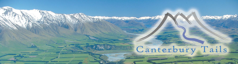 NZSA - Canterbury Tales